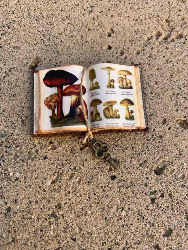 mushrooms miniature book